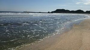 いすみの海岸
