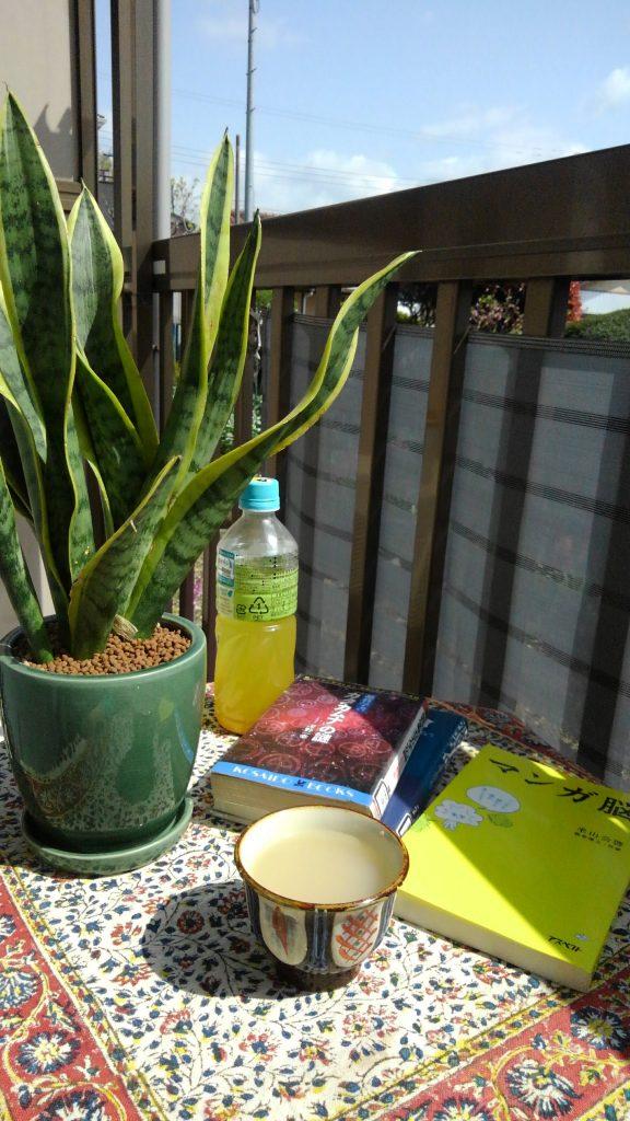 陽光の中、甘酒と読書と桜