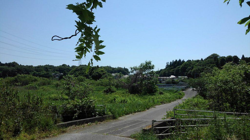 ここは千葉の田舎道