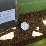土壌改善アイテム 炭バクチャとカグツチ